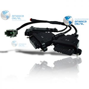 Celect Plus Bench Harness
